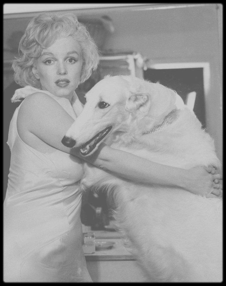 1958 / Dans les coulisses d'une session photos avec Richard AVEDON où se dernier fait poser Marilyn parodiant Jean HARLOW.