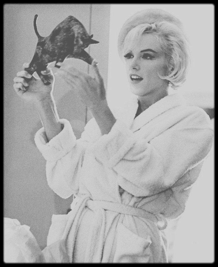 """1er Juin 1962 / (PART III) Une petite fête est organisée lors du tournage du film """"Something's got to give"""", à l'occasion du 36ème anniversaire de Marilyn. Les acteurs du films, les techniciens ainsi que George CUKOR, le réalisateur, étaient de la partie. Marilyn recevra alors plusieurs petits présents, dont un taureau en bronze, qui ornera sa table de salon dans sa nouvelle villa de Brentwood."""