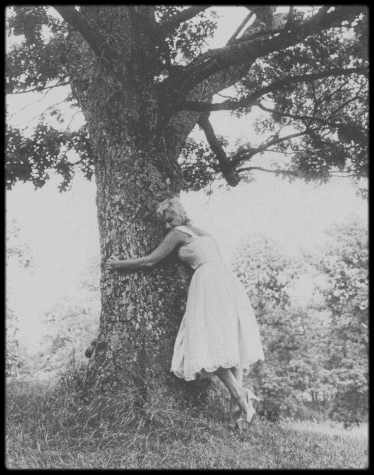 1957 / (Part II) Marilyn et MILLER dans leur propriété de Roxbury, Connecticut, sous l'objectif du photographe Sam SHAW.