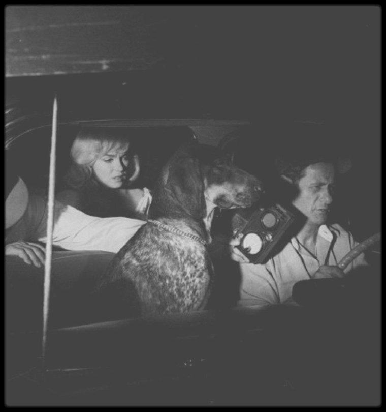 """1960 / Marilyn, John HUSTON ou encore Eli WALLACH, sur le tournage d'une scène du film """"The misfits""""."""