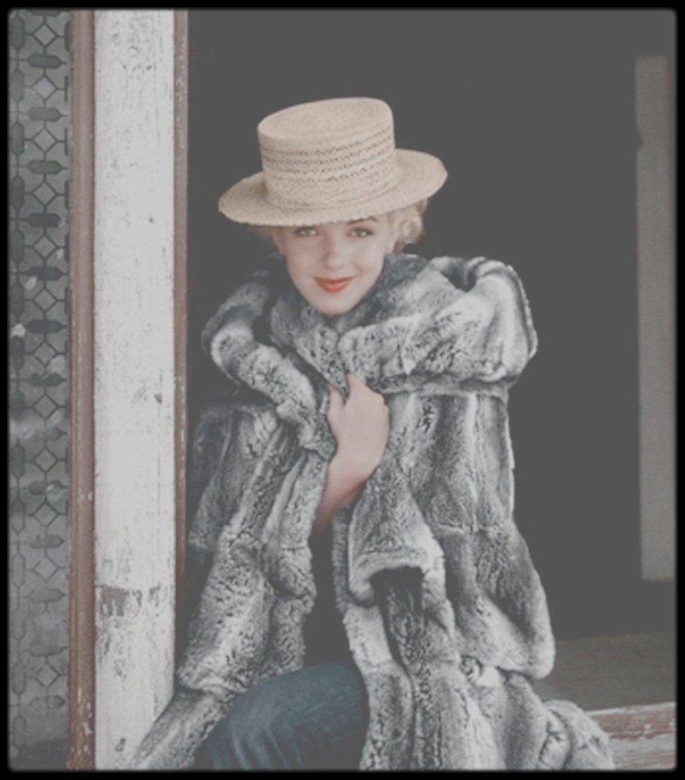 "1954 / Session ""Grey fur"" by Milton GRENE."