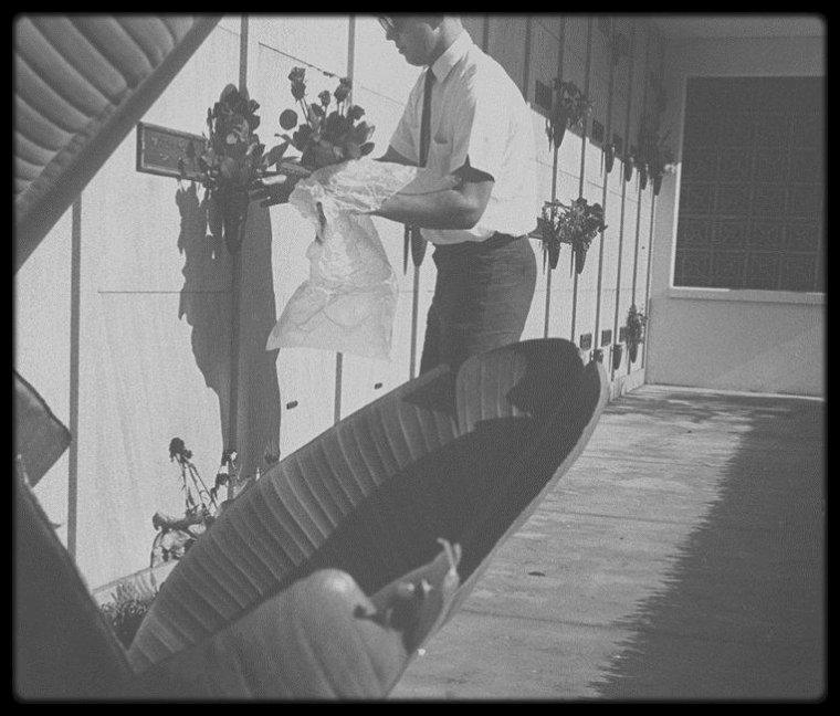 REST IN PEACE MY DEAR MARILYN / Toussaint et fête des morts ; La célébration de Toussaint fut suivie localement d'un office des morts dès le IXème siècle. En 998, les moines de Cluny instituèrent une fête des trépassés le 2 novembre, qui entra dans la liturgie romaine comme commémoration des fidèles défunts au XIIIème siècle.  Le culte des morts resta cependant massivement célébré au 1er novembre. / Pendant 20 ans après sa mort, Joe DiMAGGIOfait en sorte que la tombe de Marilyn soit fleurie trois fois par semaine.