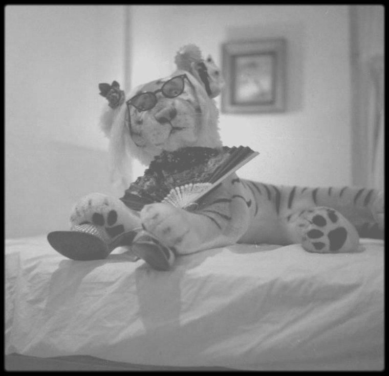 1957 / Marilyn posant pour Richard AVEDON.