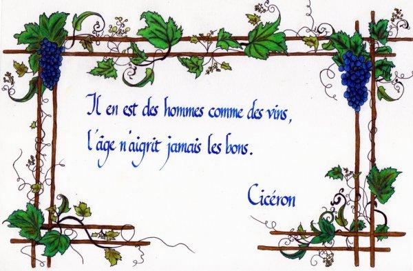 Citation bordure vigne