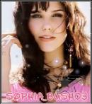 Photo de sophia-bush03