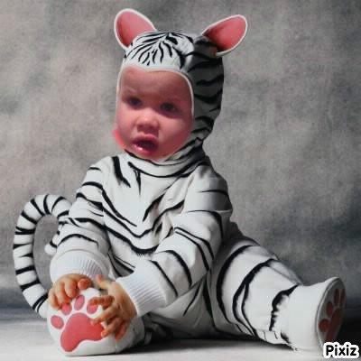 mon petit tigrou