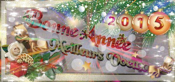 JE VOUS PRÉSENTE À TOUTES ET TOUS MES MEILLEURS VOEUX POUR 2015.