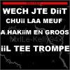 #_SHERiiNE - WECHH JTE Dii CHUii LA MEUF A HAKiiM EN GROS iiL TE TROMPE !!  (2010)