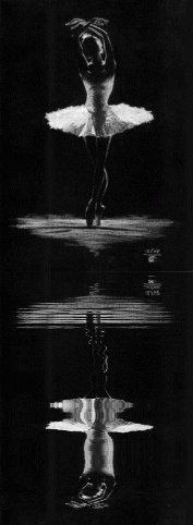 Le lac des cygnes 😍😲🙆💕