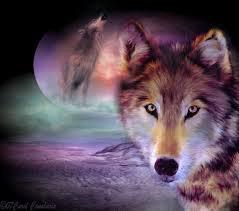 voila ma pation les loup