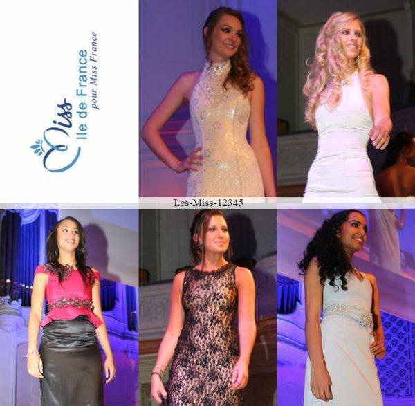 Miss Île-de-France 2014 ~ Premières candidates