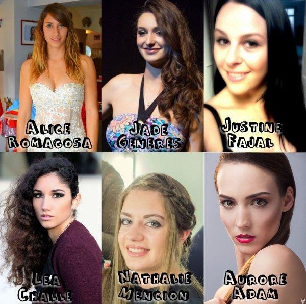 Miss Roussillon 2014 - Candidates et élection du blog