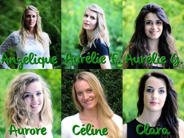 Miss Pays de Savoie 2014 :: Les candidates et l'élection du blog