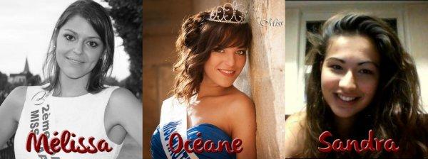 Miss Champagne-Ardenne 2014 :: Candidates et élection du blog