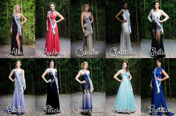 Miss Nord-Pas-de-Calais 2014 :: Les candidates et l'élection du blog