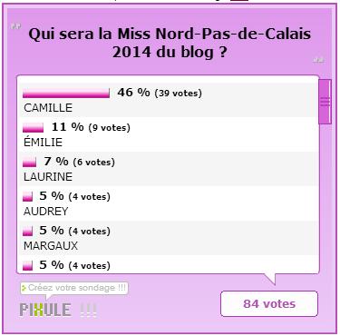 ÉLECTION RÉGIONALE - Miss Nord-Pas-de-Calais 2014, Camille Cerf