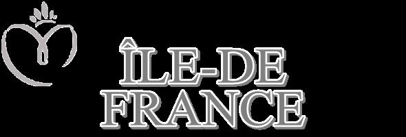 MISS ÎLE-DE-FRANCE 2015 :: FANNY HARCAUT