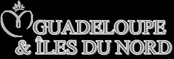MISS GUADELOUPE & ÎLES DU NORD 2015 :: JOHANNA DELPHIN