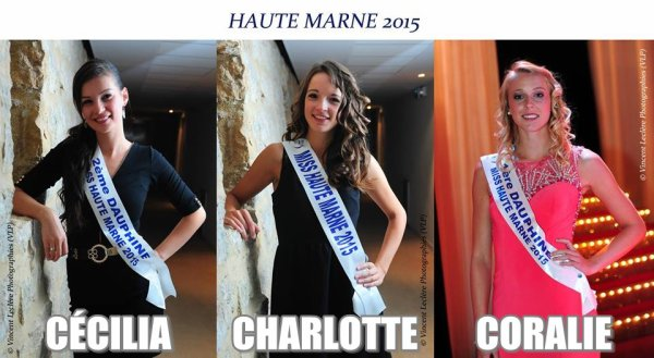MISS CHAMPAGNE-ARDENNE 2015 :: Les candidates