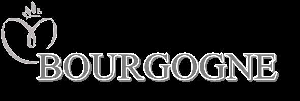 MISS BOURGOGNE 2015 :: JADE VÉLON