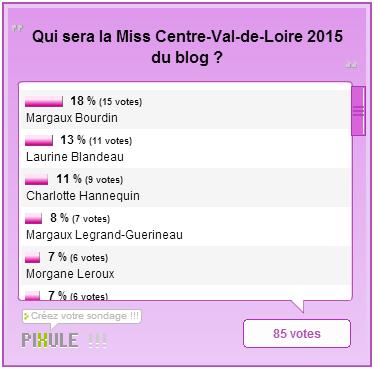 Miss Limousin 2015 / Miss Centre-Val-de-Loire 2015 / Miss Bourgogne 2015 - Les résultats des élections du blog