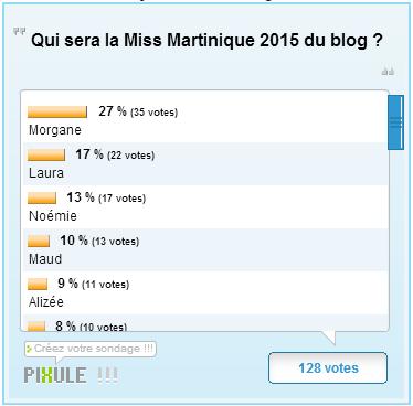 Les résultats des dernières élections du blog