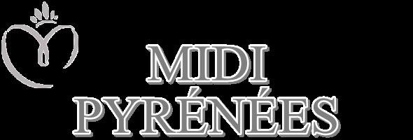 MISS MIDI-PYRÉNÉES 2015 :: ÉMILY SEGOUFFIN