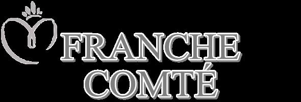 MISS FRANCHE-COMTÉ 2015 :: ALIZÉE VANNIER