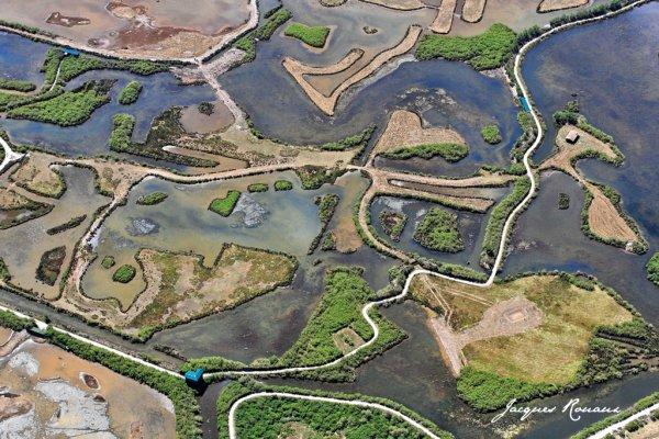 LA RESERVE ORNITHOLOGIQUE DU TEICH (ex Parc Naturel)