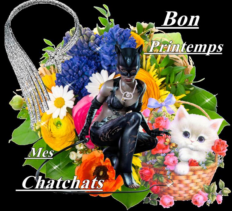(l) BONNE JOURNEE MES CHATONS (l)