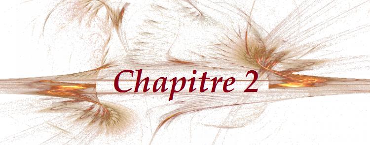 Fiction 1 Chapitre 2