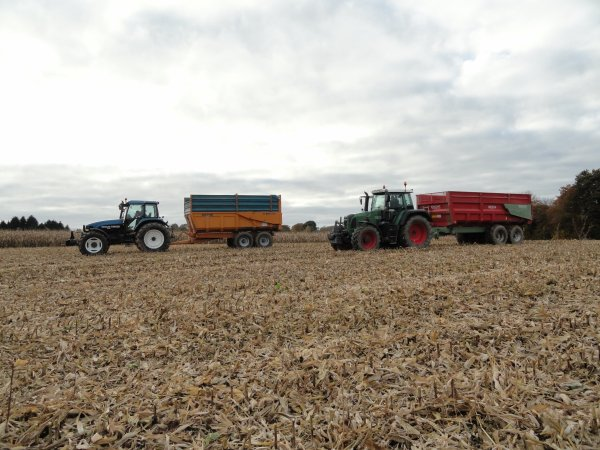 maïs grain 2010