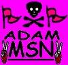 adam-alaoui