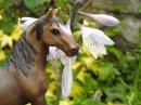 Photo de horse-dream-schleich