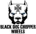 Photo de the-blackdog