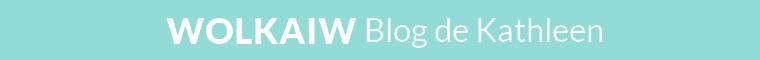 Blog n°2 : Wolkaiw