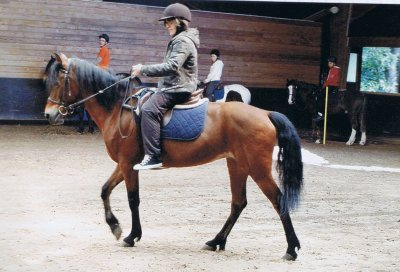 moi a cheval