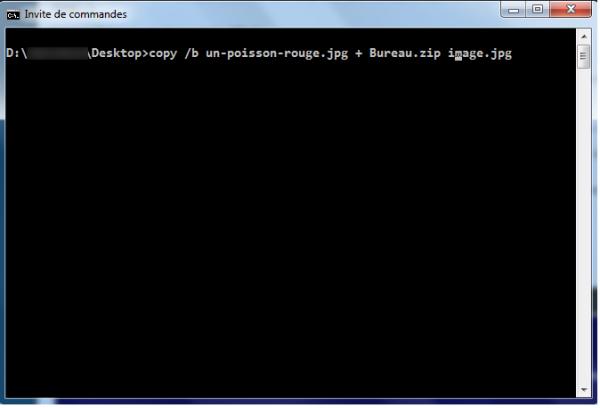 Cacher des fichiers de n'importe quel type dans une image sur Windows ?
