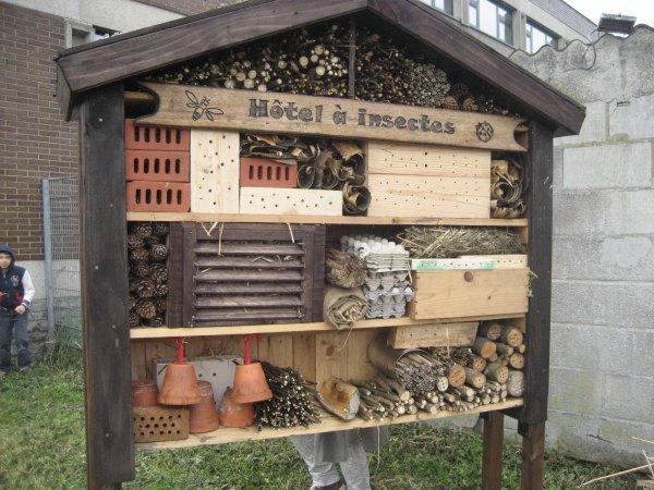 Blog de delvalmanage blog de delvalmanage for Hotel a insecte acheter