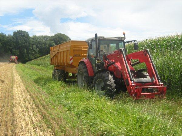 moisson de blé tendre avec une moissoneuse case de l eta claude gretter au benne 2 mf et benne maitre 16 tonne et benne