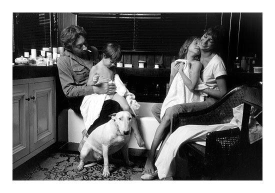 Famille gainsbourg et le bull terrier image de bull terrier for La maison du lit paris