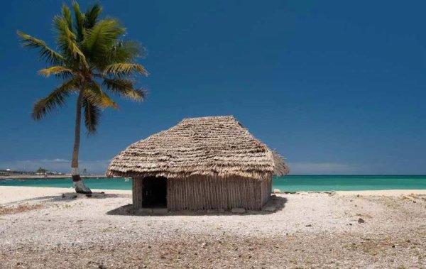 Une cabane un cocotiers une plage paradisiaque aux for Cabane de plage bois