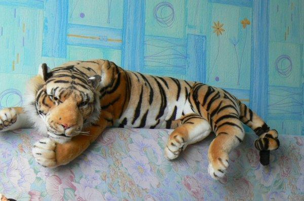 mon dormeur