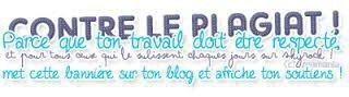 Règles du blog ♥