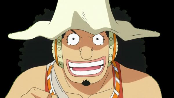 Présentation de l'équipage des Mugiwara (Chapeau de paille)