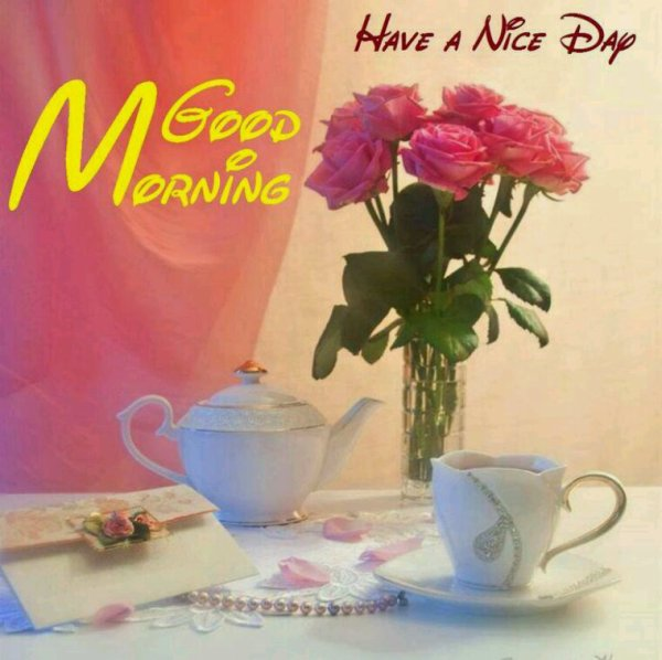 Bonjour à tous