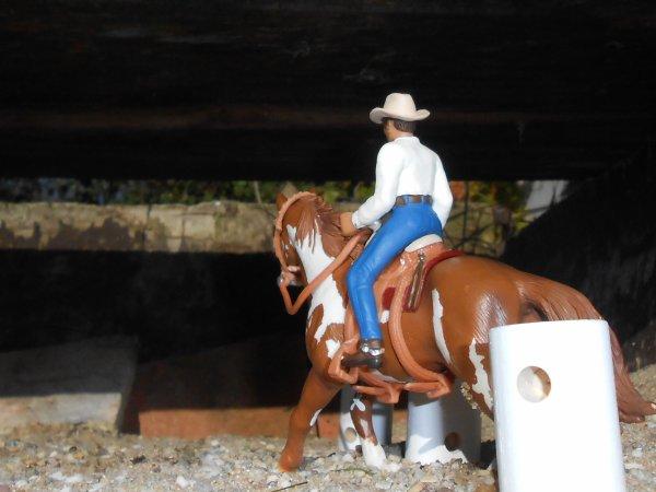 La cavalerie !