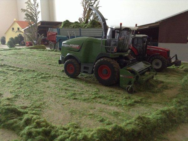 Ensilage d'herbe