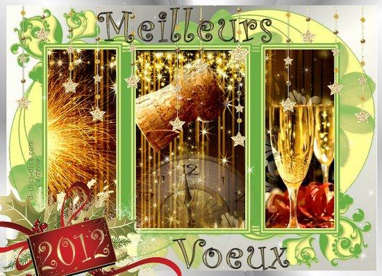 Bonne et heureuse année 2012 à tout le monde