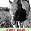 xParadis-Sauvage